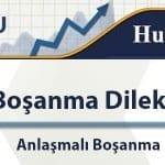 anlasmli-bosanma-dilekcesi-ornegi-1100X300